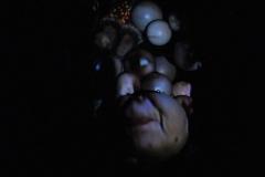 In the dark _014