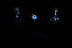 In the dark _021